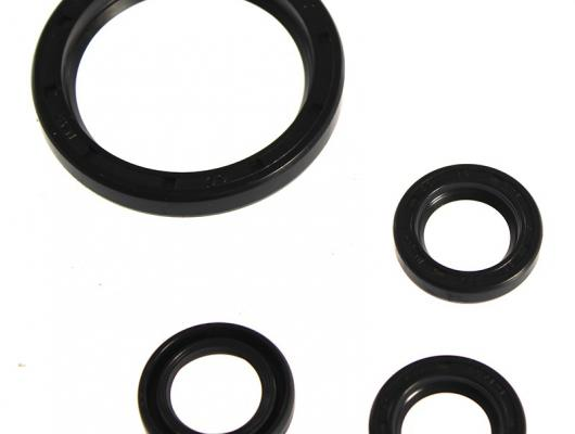 Annovi Reverberi RCV Oil Seal Kit