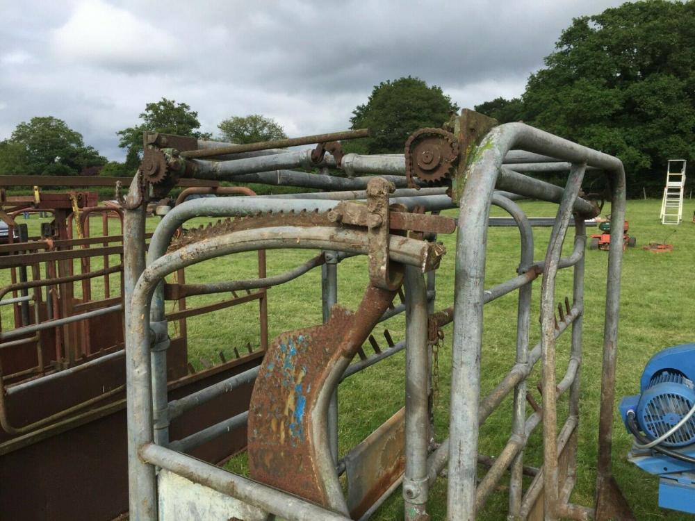 Cattle Crush £390 plus vat £468 located close to Gatwick Airport